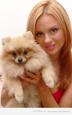 Марси и Анна Семенович