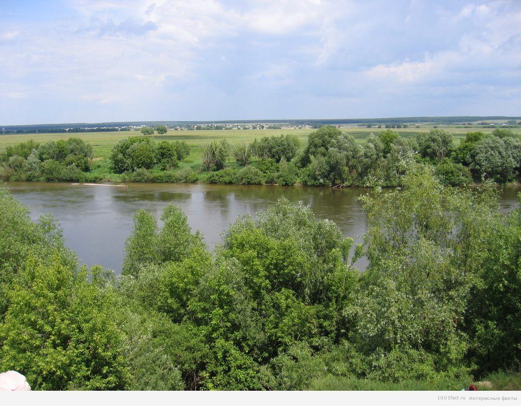 Река судоходна от своего устья до