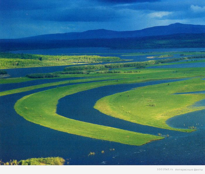 большая река Амур
