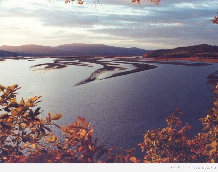 о реке Амур