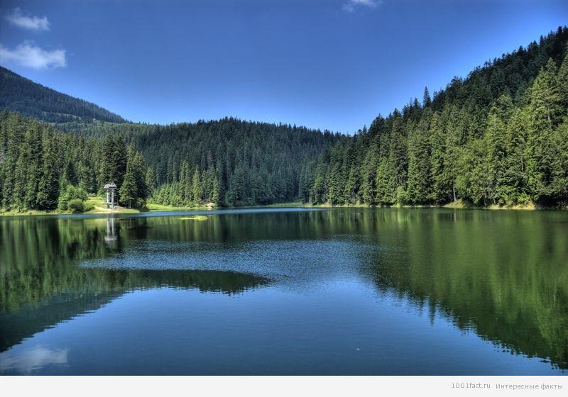 Сіневір_озеро