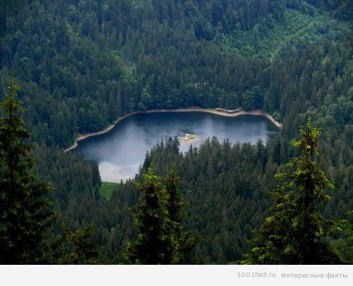 озеро_Карпати