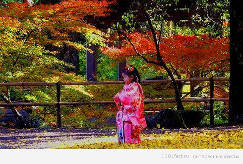 про праздник Японии 7-5-3