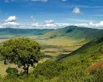 природа_Нгоронгоро