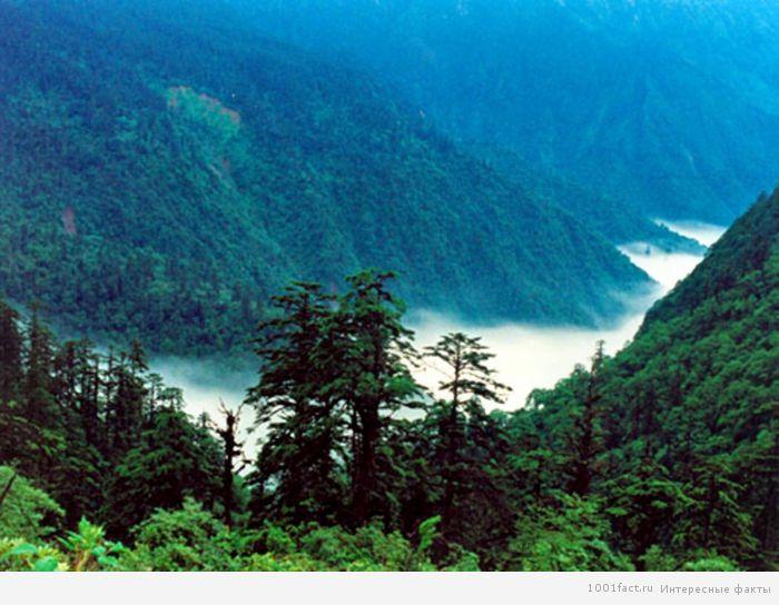 легенды и факты о долине