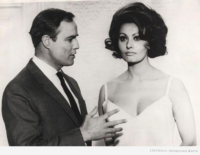 Брандо и Софи Лорен
