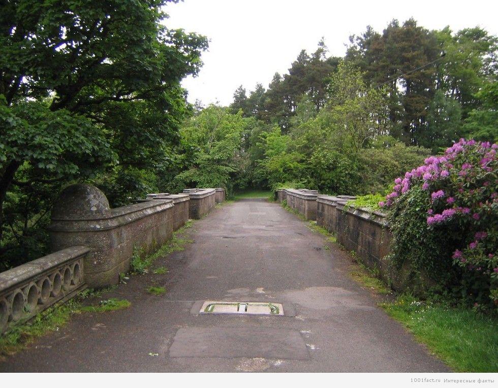 про мост