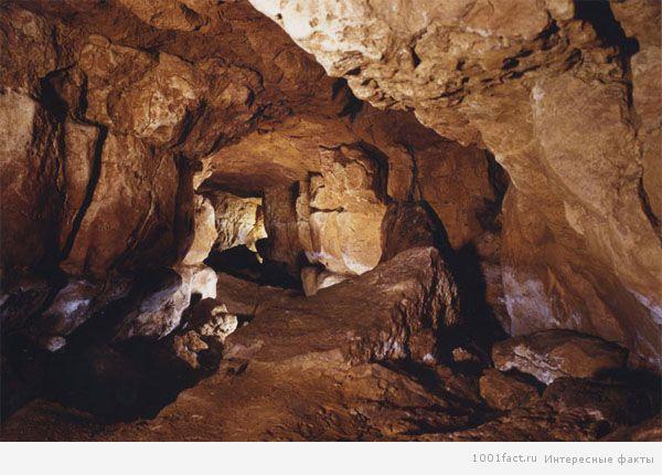 древняя пещера Альтамира