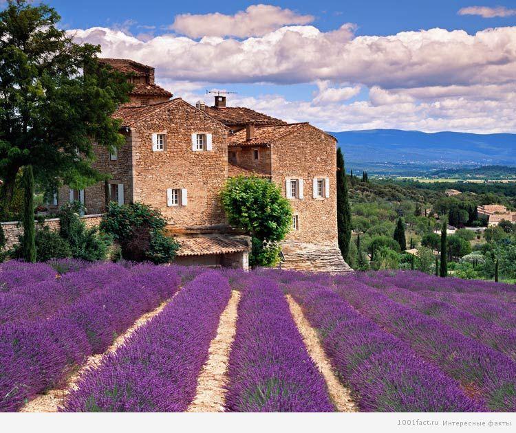 красоты Тосканы
