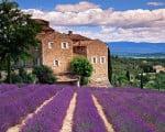 факты о Тоскане
