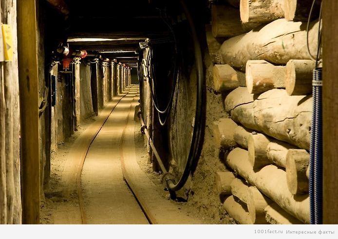 многочисленные коридоры