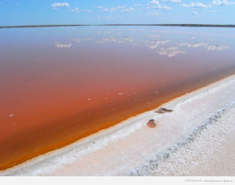 """озеро_""""мертвое море"""""""
