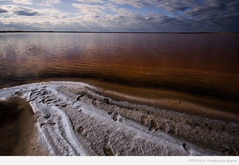 целебная грязь в озере