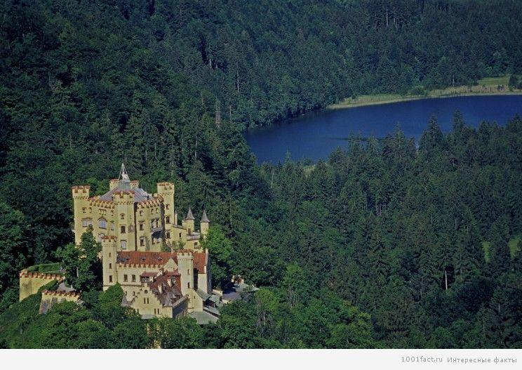 замок в окружении леса