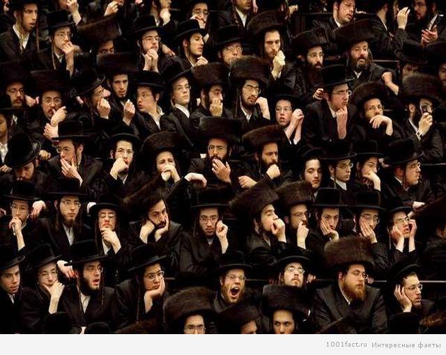 сплоченность еврейского народа