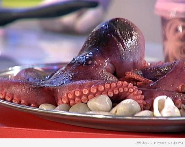 осьминог на блюде