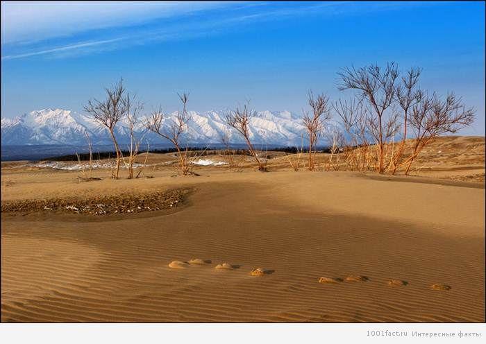 о Чарской пустыне