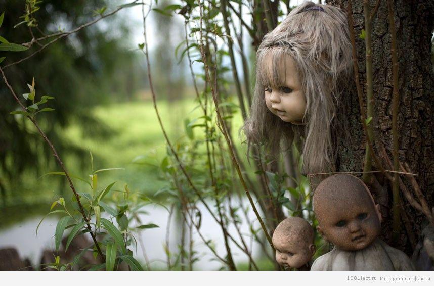 факты, остров кукол