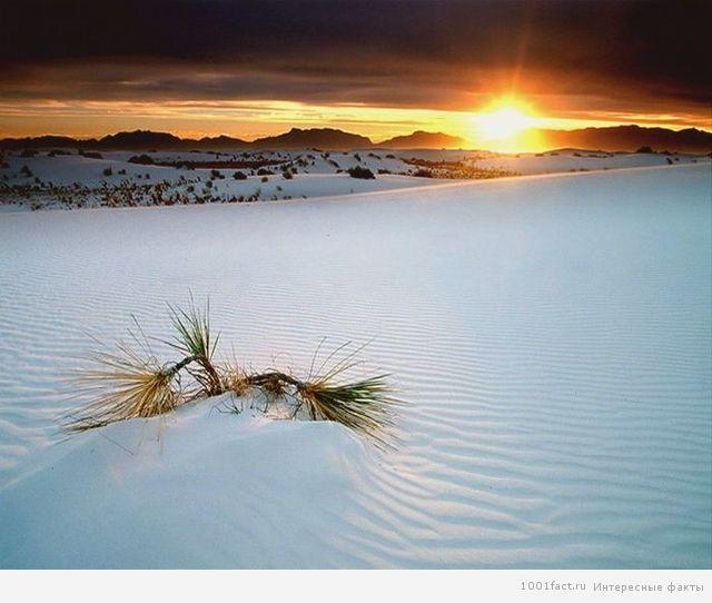 пустыня Белых Песов
